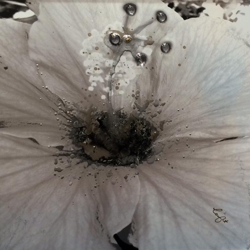 Hibiscus-1-Copy