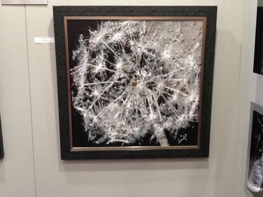 Framed photo on aluminium: 76cm x 76cm