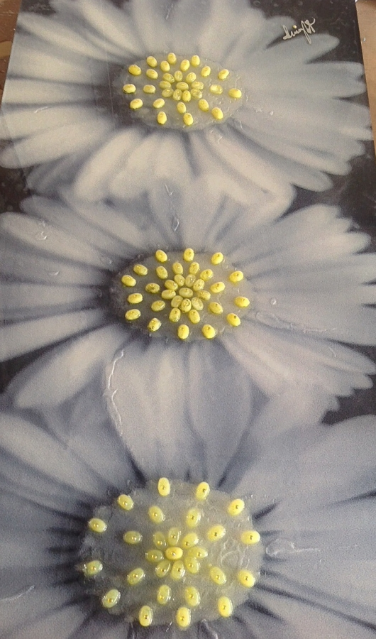 Photo on Acrylic 120cm x 60cm