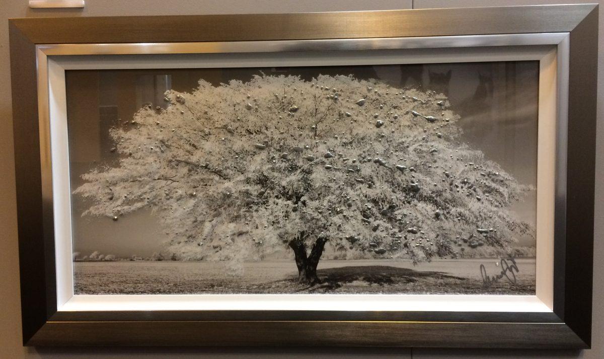 Yellow Cherry Blossom Tree